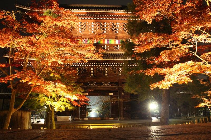 金戒光明寺のライトアップ